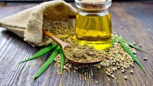 Immer schön – ziehen Sie Nutzen aus der Kraft der Samen und schaffen ein ideales Kosmetikprodukt!